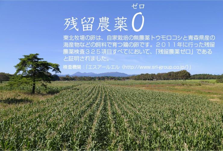 飼料のために、自社の4ヘクタール(農家2軒分の農地)の畑で、農薬や化学肥料は一切使わずに鶏専用のトウモロコシを栽培しています。