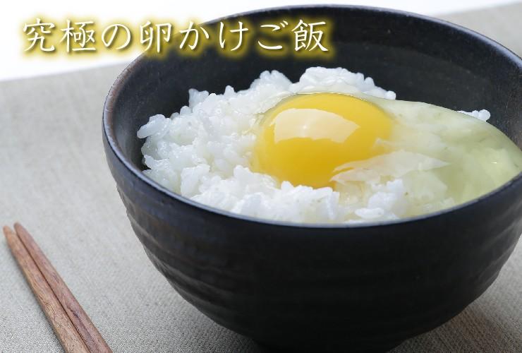 黄身が普通の卵より大きく、濃厚クリーミーな味わいで、卵かけご飯に最適な卵です。